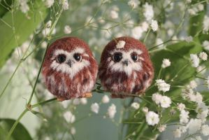 Owlets and Spring by Irentoys
