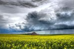 Raps at Storm by stg123