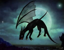Black dragon in the night by Taily
