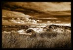 Dunes in Sepia and B-W by ernieleo
