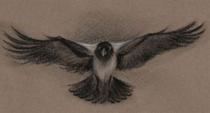 Charcoal crow by Paperiapina