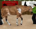 Back It Up - PD Showmanship by Starcather9