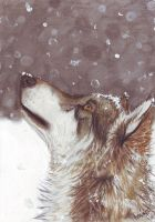 Falling Snow by Phantom--Wolf