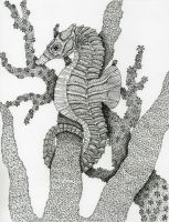 Pen and Ink - Seahorse by Bio92