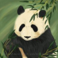 Commission: Panda by aLyTeh