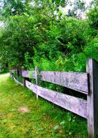 Country Fence by dutch12