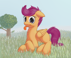 Scootaloo by lurarin