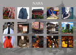 Nara inspiration meme by Amarna