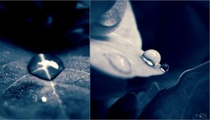 Diptych 1 by CodexVeritas