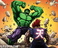 Akuma vs. Hulk by gaudiamo