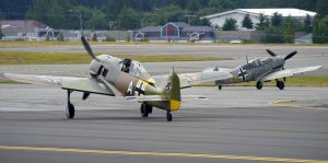 Luftwaffe Birds Taxi by shelbs2