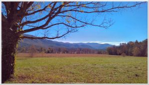 Cades Cove Scenery 28 by slowdog294