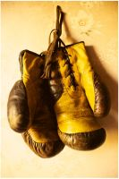 Pair of boxing-gloves by shinyluna