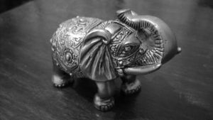 Lucky elephant by miki015mira