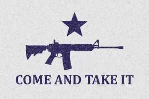 Texas Come and Take It Flag Modified AR-15 by Ashley3d