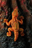 Fire gecko by hontor
