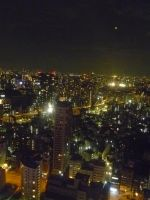 View from Tokyo Tower by sambart