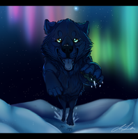 I'm Coming Home by Naoki-Wolf