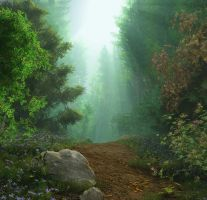 Path to Pond by pdeck