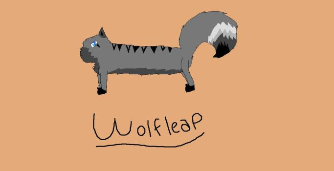 Wolfleap(warrior OC) by Derpyhugsyou123