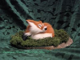 Vinz The Little Red Fox by Zhon