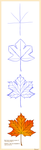 How to draw maple-leaf by Bestary