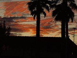 sunset filtered by milozilla