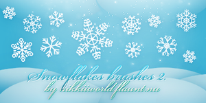 Snowflakes Brushes 2 by cherryproductionsorg