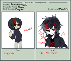 Character Development Meme by RavenHeart201