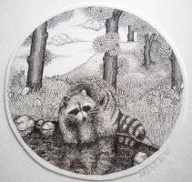 Raccoon in the woods by iristerwisscha