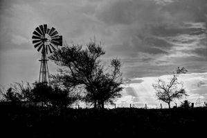 Waiting for the wind II BW by AlejandroCastillo