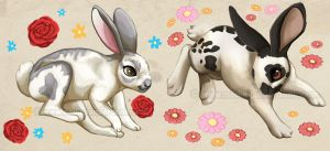 Rabbit Illustrations by NadiavanderDonk