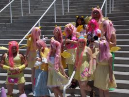 AX2014 - MLP Gathering: 30 by ARp-Photography