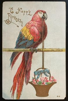 Antique Postcard - Parrot with Basket by KarRedRoses