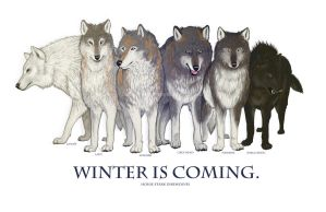 Winter Is Coming. by Daelinn