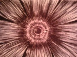 Charcoal Flower by rachiesroom