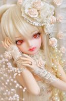 Cream Rose ::04:: by prettyinplastic