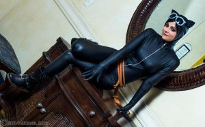 Cat Burglar - Catwoman by Cortana2552