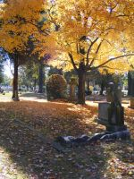 Autumn Cemetery 18 by DKD-Stock