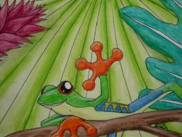Tree Frog by katdarkshines