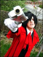 Hellsing: Enough by Maxieyi