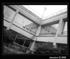 Undergraduate Library--July 11 by hutsonlover
