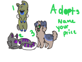 Adopts by qross