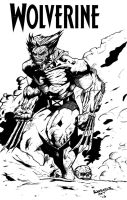 Wolverine Untamed by DiegoE05