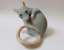 Washing Rat Sculpture by philosophyfox