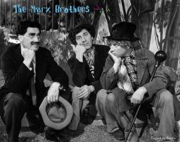 The Marx Brothers by HalloweenMAGE
