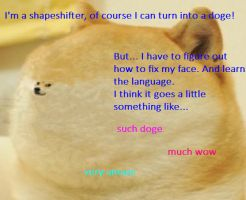 Ask the Fauchereve 1: Doge by Shadow-Italy