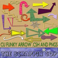 Funky Arrows Custom Shapes by debh945