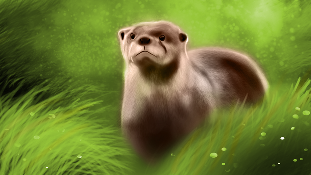 Otter by jamheadii