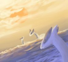 Lugia's morning at the sea by Nimphradora